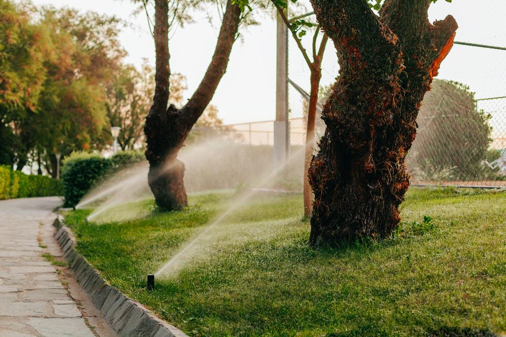 Orlando Irrigation System