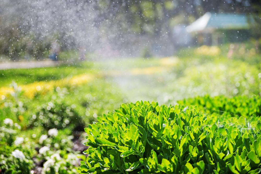 Sprinkler Repair Orlando